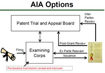 AIA Options
