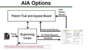 AIA Options